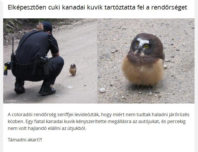 www.postaimre.net/kepek/kuvikpolice.jpg